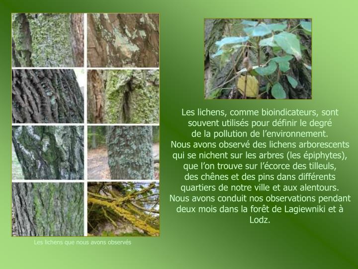Les lichens, comme bioindicateurs, sont souvent utilisés pour définir le degré