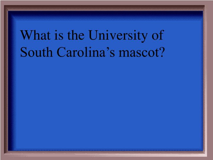 What is the University of South Carolina's mascot?