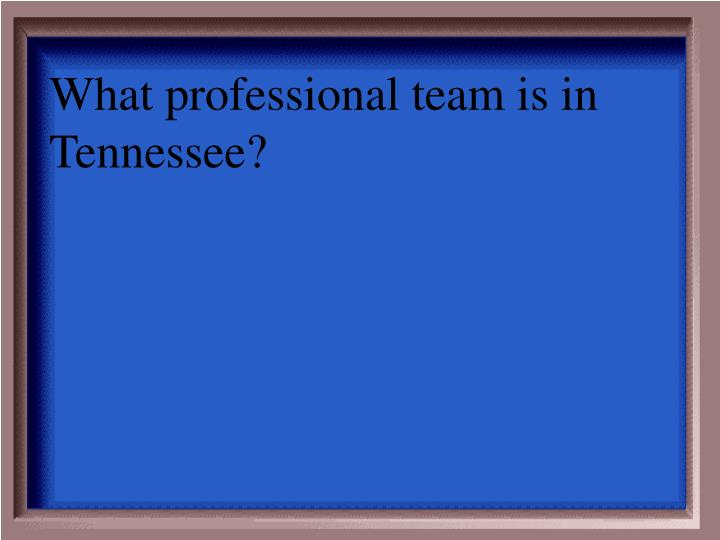 What professional team is in Tennessee?