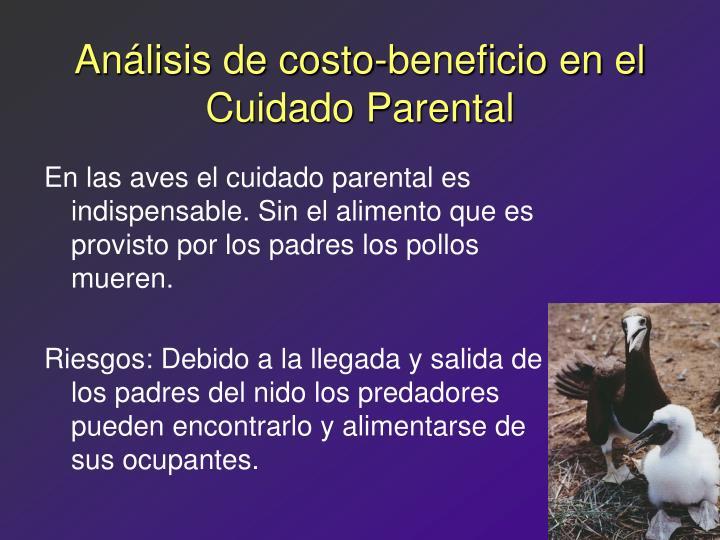 Análisis de costo-beneficio en el Cuidado Parental