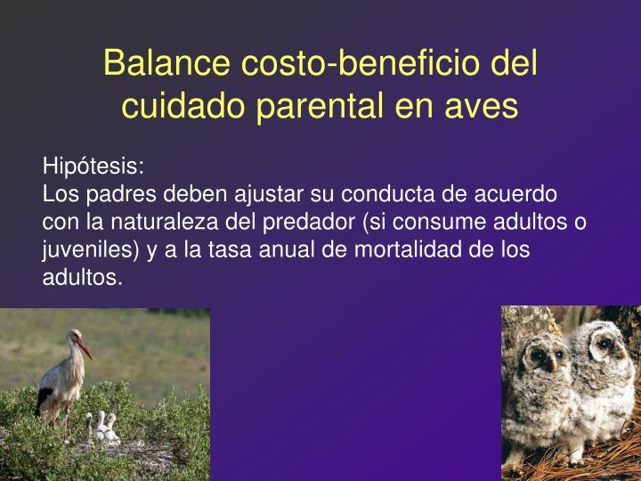 Balance costo-beneficio del cuidado parental en aves