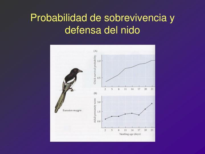 Probabilidad de sobrevivencia y defensa del nido