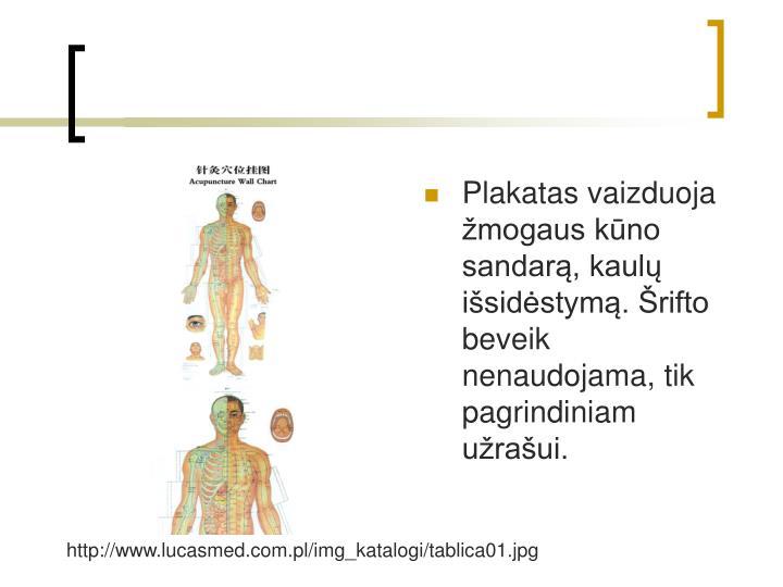 Plakatas vaizduoja mogaus kno sandar, kaul isidstym. rifto beveik nenaudojama, tik pagrindiniam uraui.