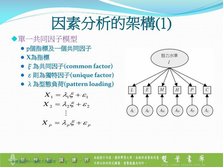 因素分析的架構(1)