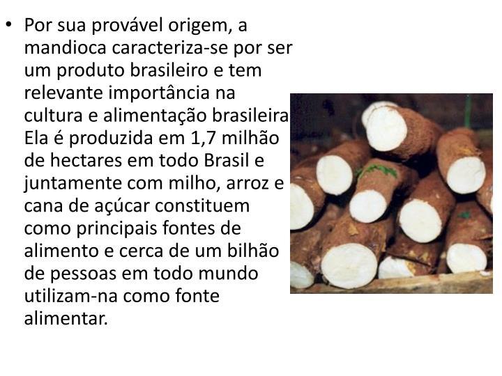 Por sua provável origem, a mandioca caracteriza-se por ser um produto brasileiro e tem relevante importância na cultura e alimentação brasileira. Ela é produzida em 1,7 milhão de hectares em todo Brasil e juntamente com milho, arroz e cana de açúcar constituem como principais fontes de alimento e cerca de um bilhão de pessoas em todo