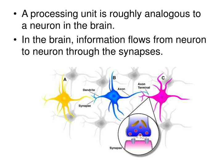 A processing unit is roughly analogous to a neuron in the brain.