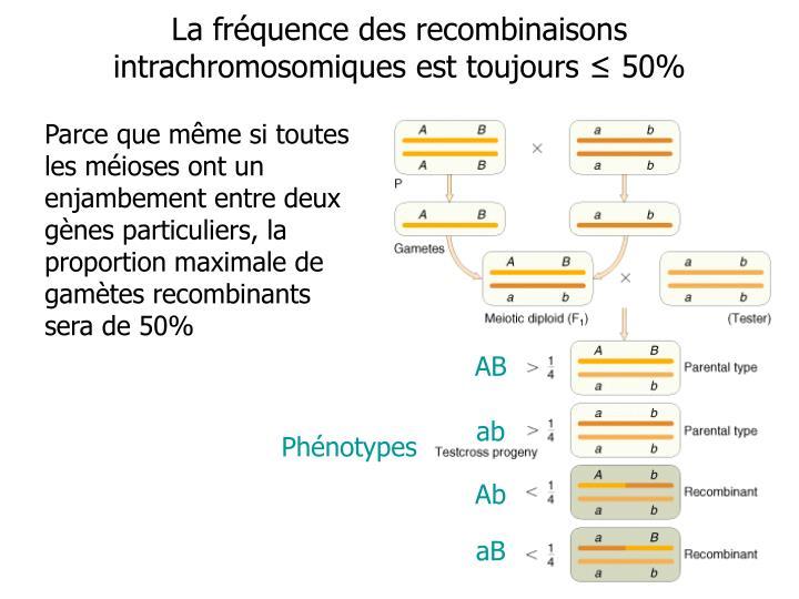 La fréquence des recombinaisons intrachromosomiques est toujours
