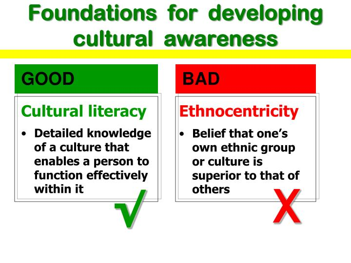 Foundations  for  developing cultural  awareness