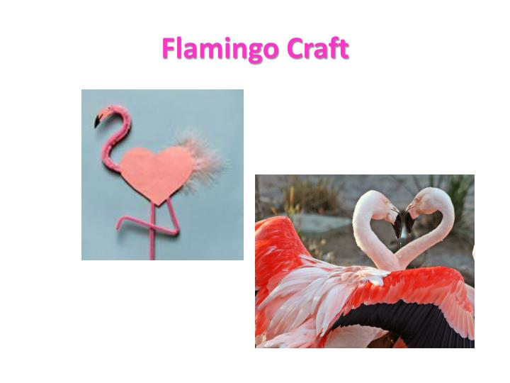 Flamingo Craft