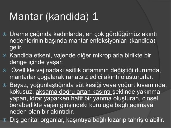 Mantar (kandida) 1