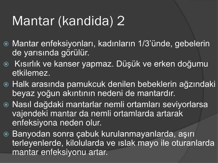 Mantar (kandida) 2