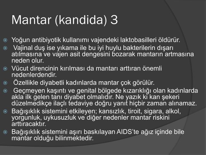 Mantar (kandida) 3