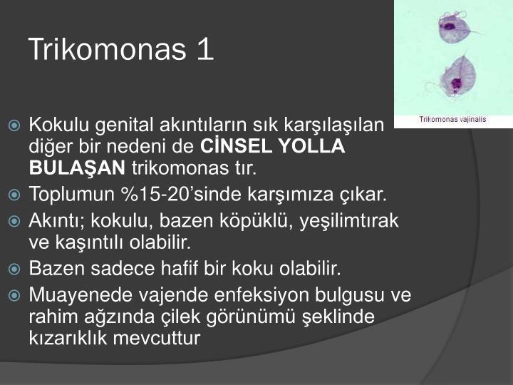 Trikomonas 1