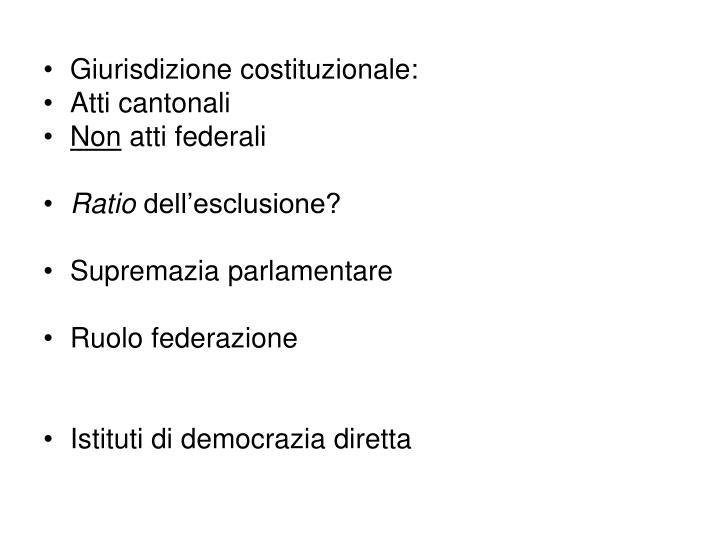 Giurisdizione costituzionale: