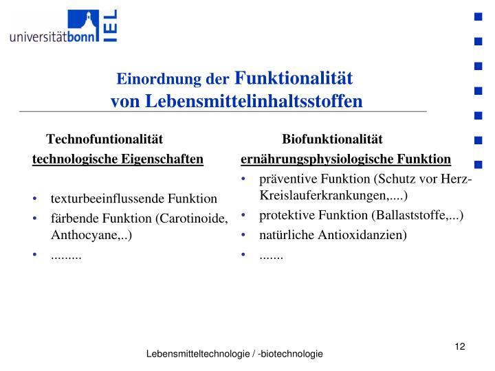 Technofuntionalität