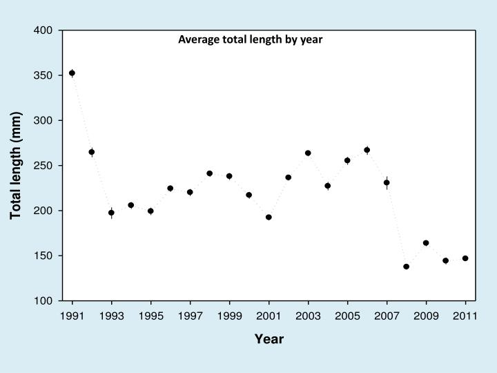 Average total length by year