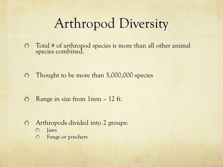 Arthropod Diversity