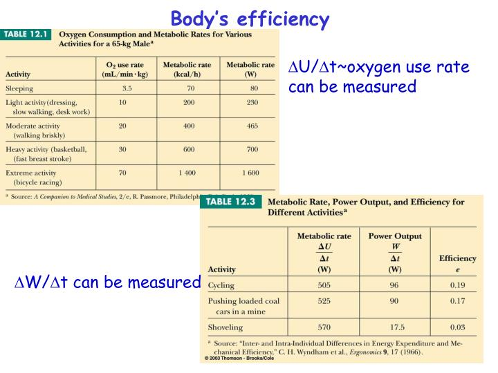 Body's efficiency