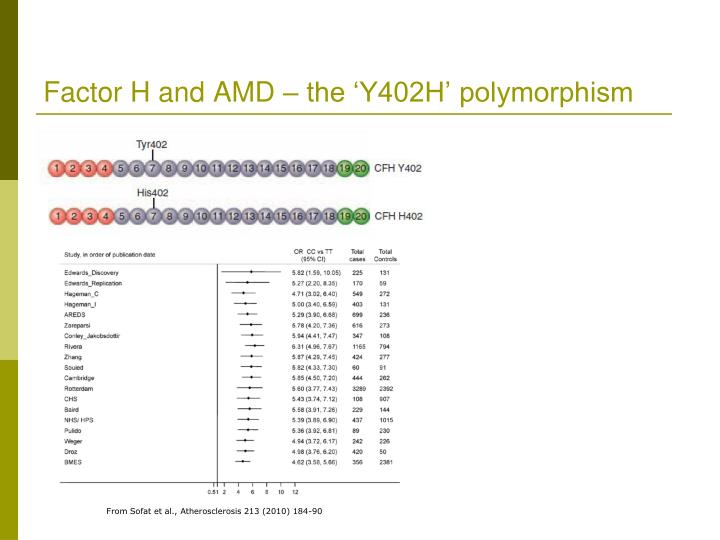 Factor H and AMD – the 'Y402H' polymorphism