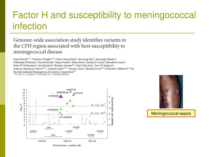 Factor H and susceptibility to meningococcal infection