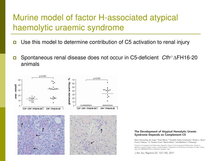 Murine model of factor H-associated atypical haemolytic uraemic syndrome