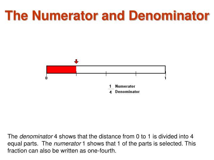 The Numerator and Denominator