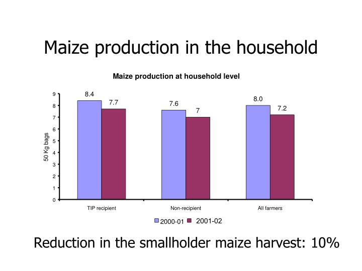 Maize production in the household