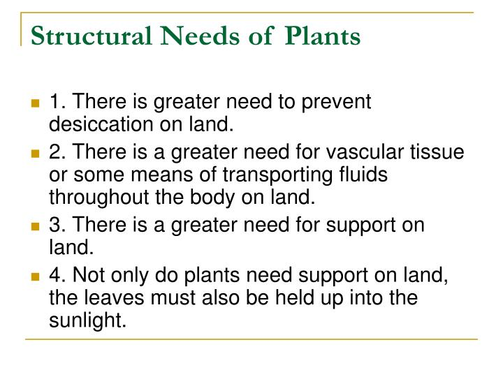 Structural Needs of Plants