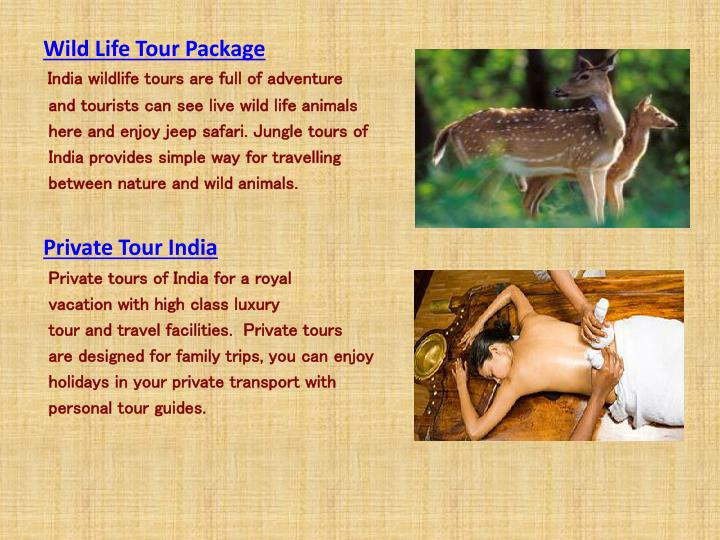 Wild Life Tour Package