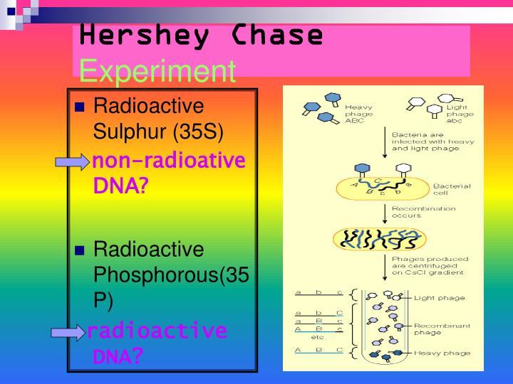 Hershey Chase