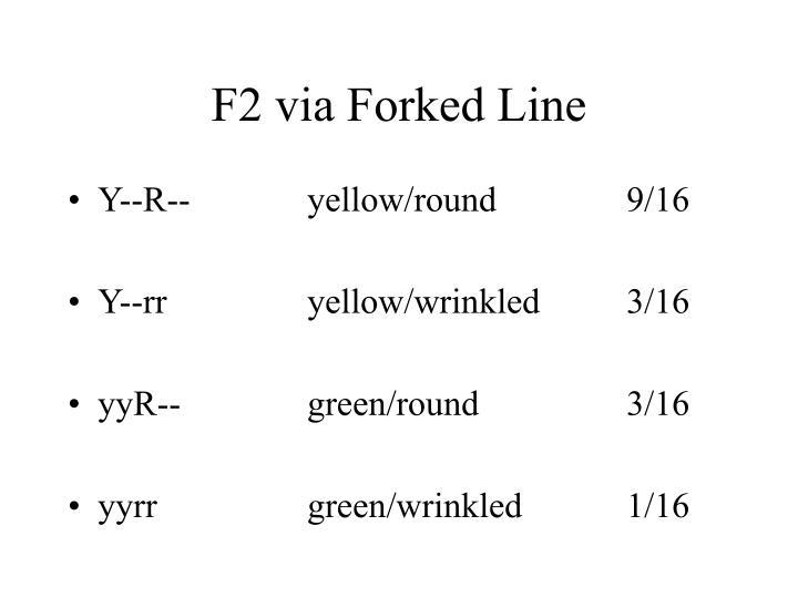 F2 via Forked Line