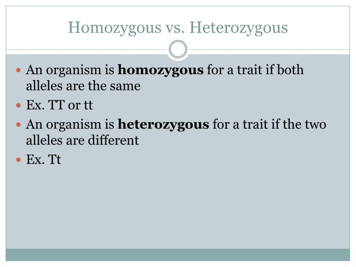 PPT - Chapter 12: Mendel and Heredity PowerPoint ...