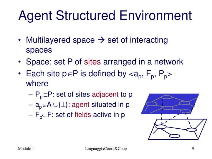 Agent Structured Environment
