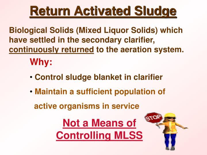 Return Activated Sludge