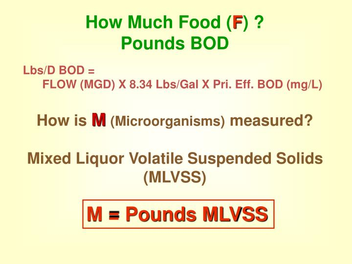 How Much Food (