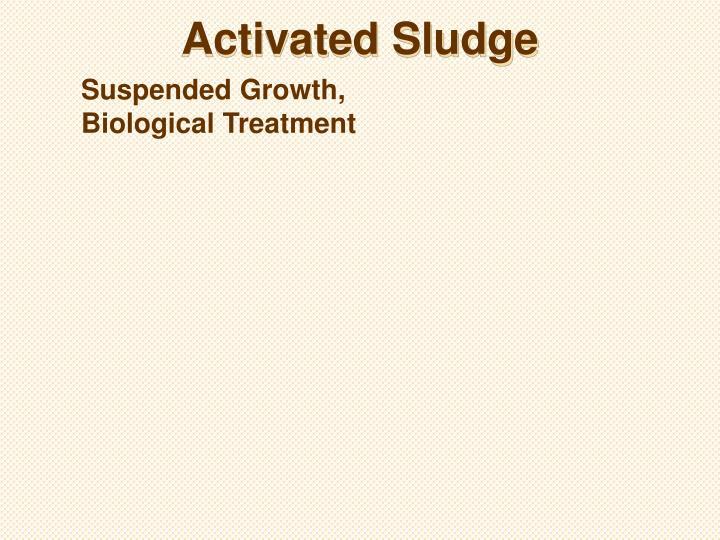 Activated Sludge