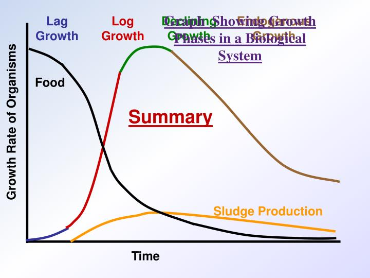 Graph  Showing Growth Phases in a Biological System