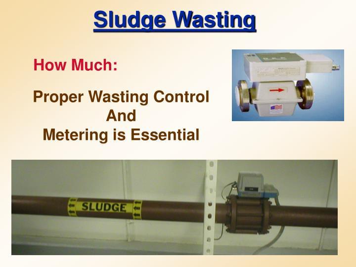 Sludge Wasting