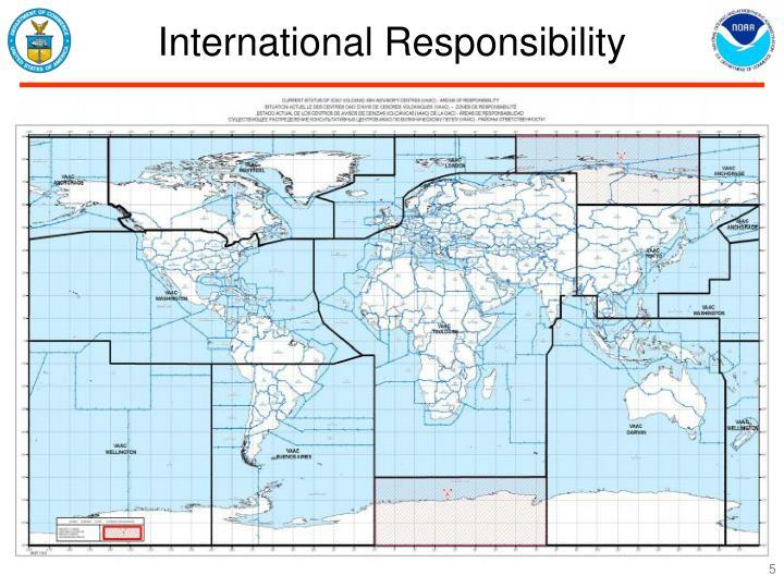 International Responsibility