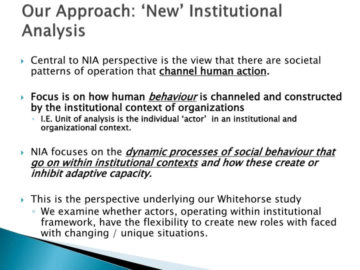 Our Approach: 'New' Institutional Analysis