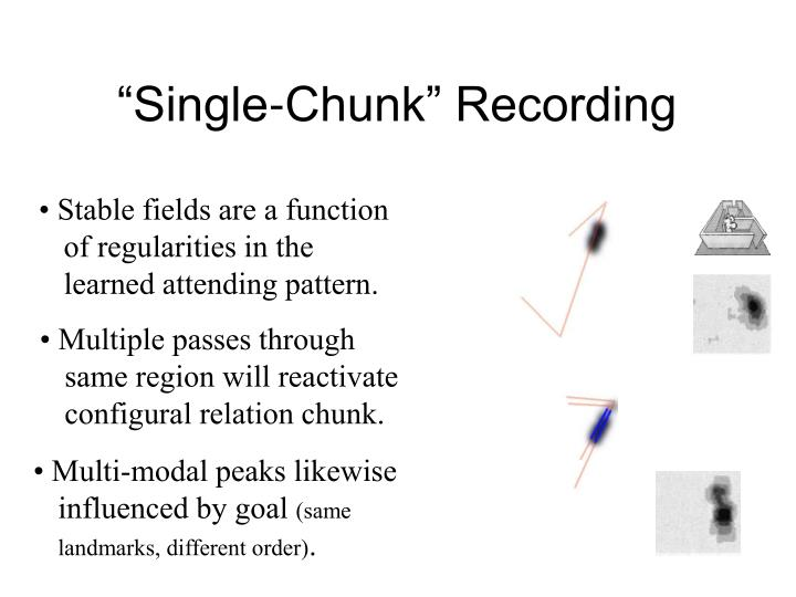 """Single-Chunk"" Recording"