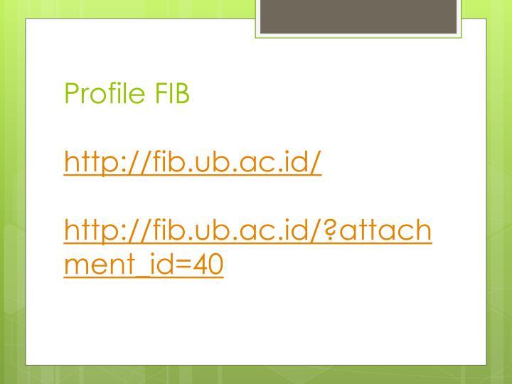 Profile FIB