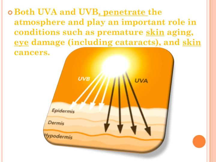 Both UVA and UVB
