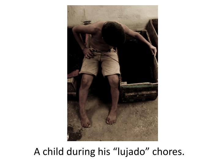 "A child during his ""lujado"" chores."