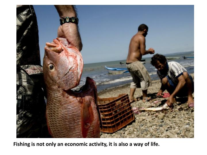 Fishing is not only an economic activity it is also a way of life