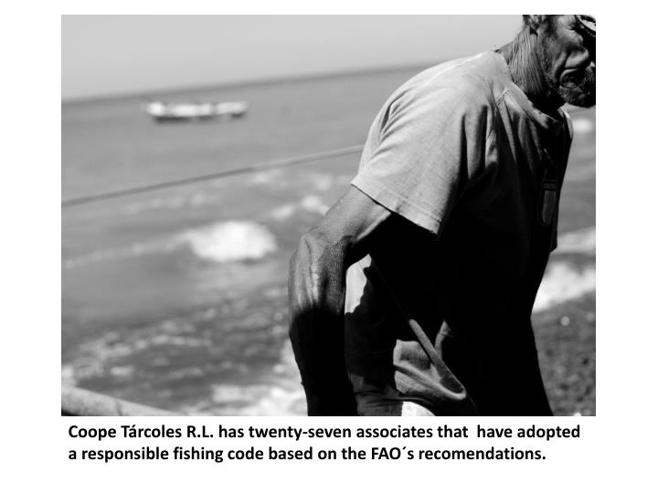 Coope Tárcoles R.L. has twenty-seven associates that  have adopted a responsible fishing code based on the FAO´s recomendations.