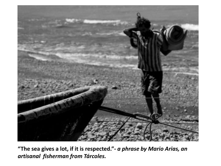 """The sea gives a lot, if it is respected."""