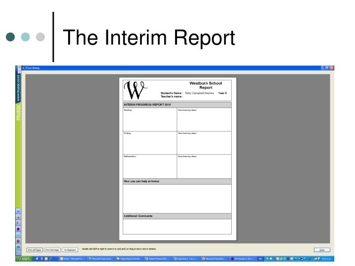 The Interim Report