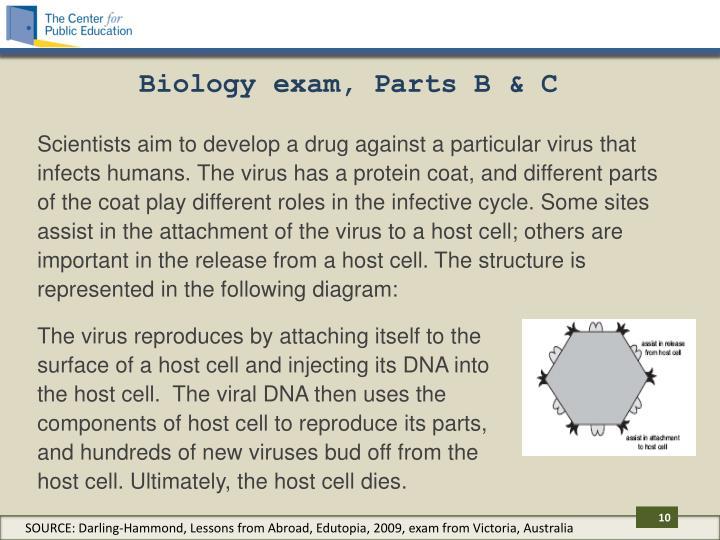 Biology exam, Parts B & C