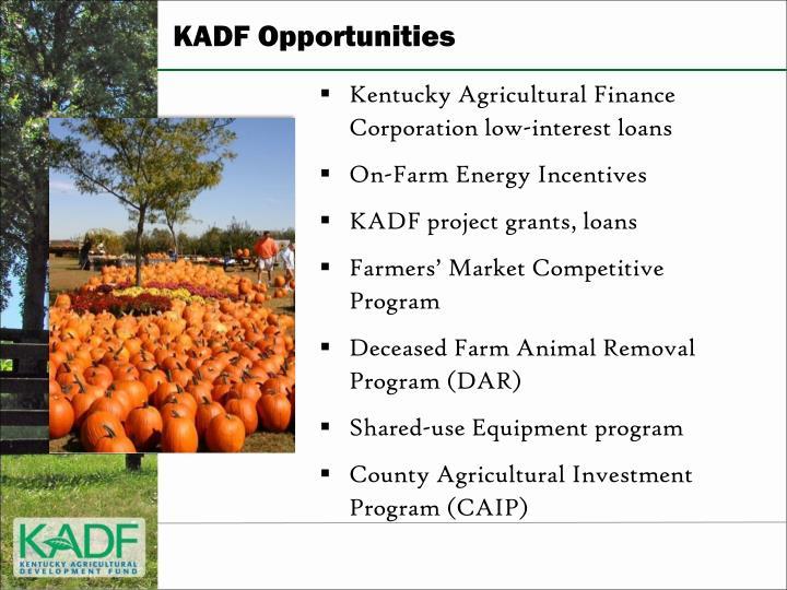 KADF Opportunities